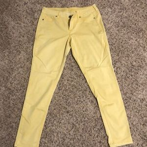 Maurice's mustard yellow jeggings